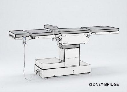 Kidney Bridge